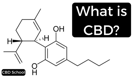 What-is-CBD-.png