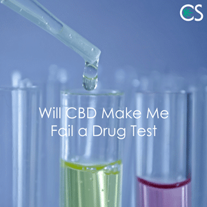 How CBD reacts on Drug test?