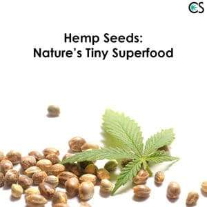Hemp Seeds | Know the benefits & how it can heal