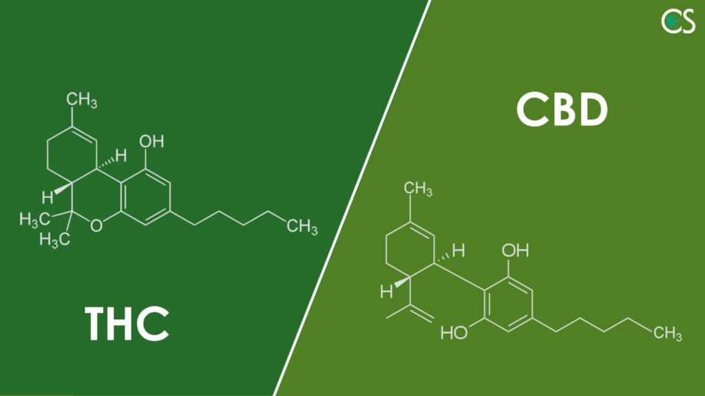 THC_and_CBD_–_Two_Cannabinoids_Shaping_the_Future