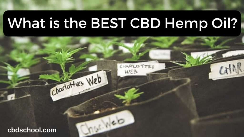 What is the Best CBD Hemp Oil? | CBD School