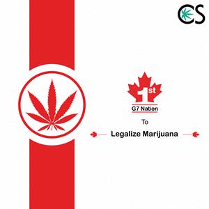 Recreational use of Marijuana Now Legal in Canada
