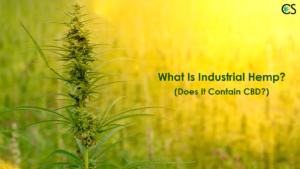 Industrial-hemp