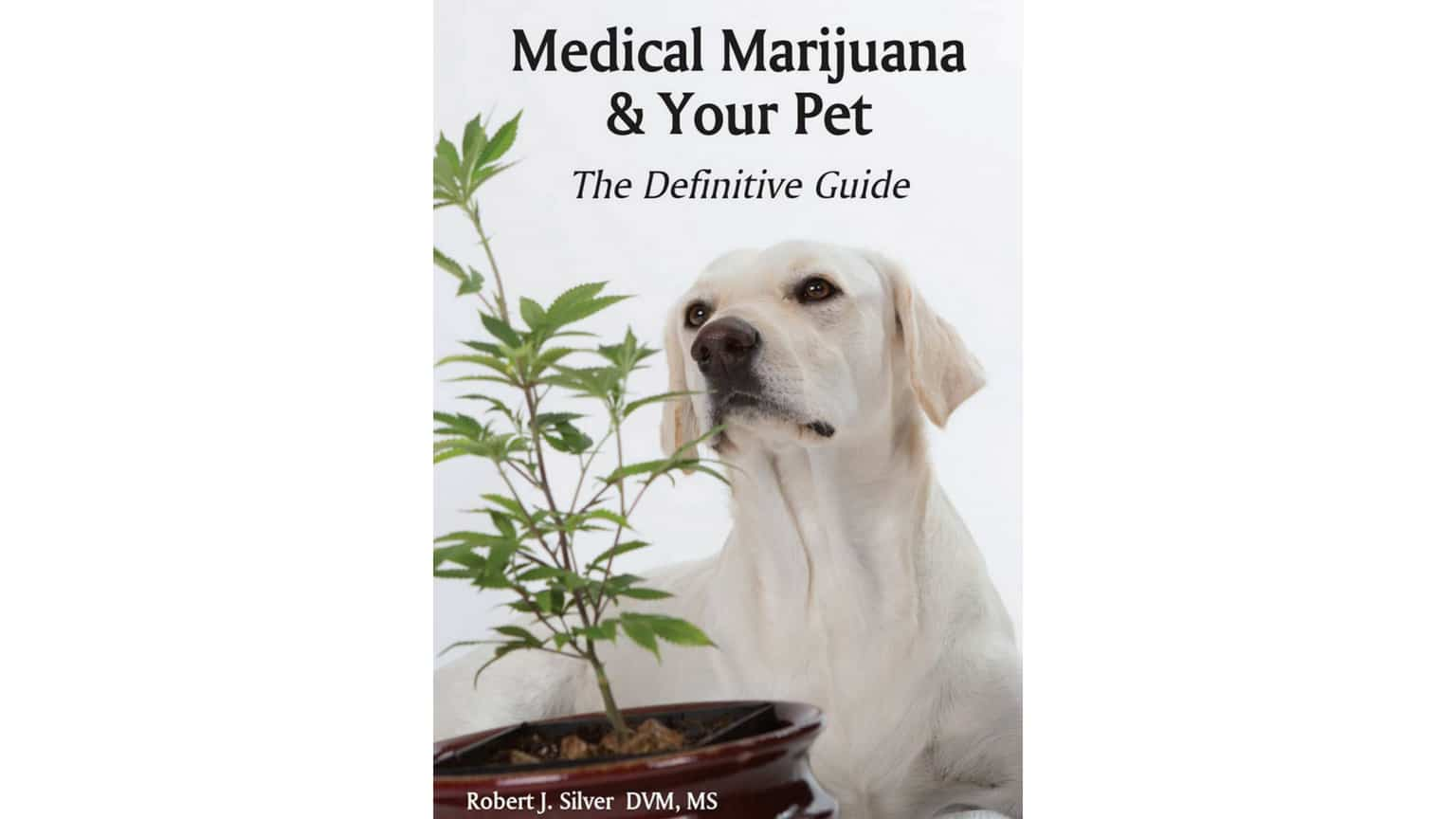 Medical-Marijuana-and-Your-Pet
