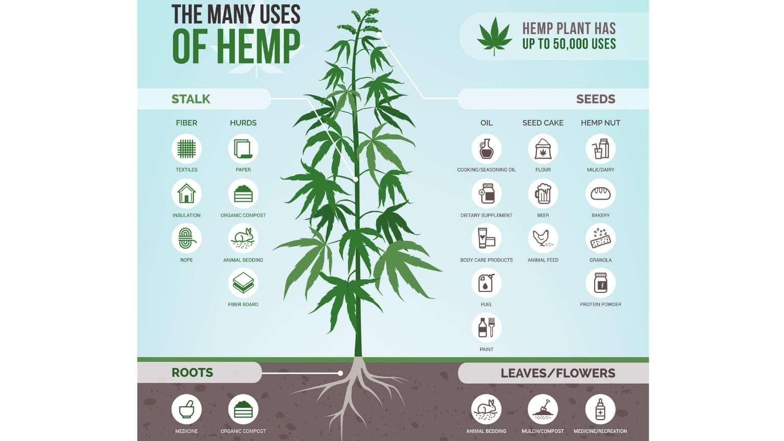 industrial-hemp-50,000-uses