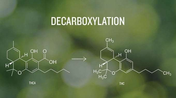 Illustration Of Decarboxlyation