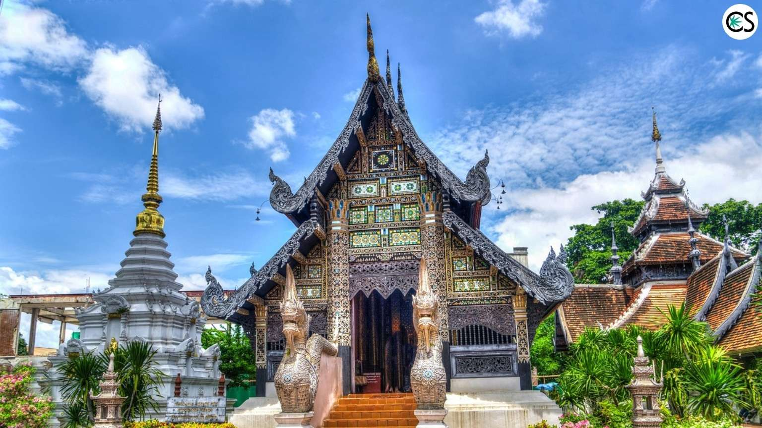 Thailand Legalizes CBD and Kratom - Green Zebra CBD Hemp Oil