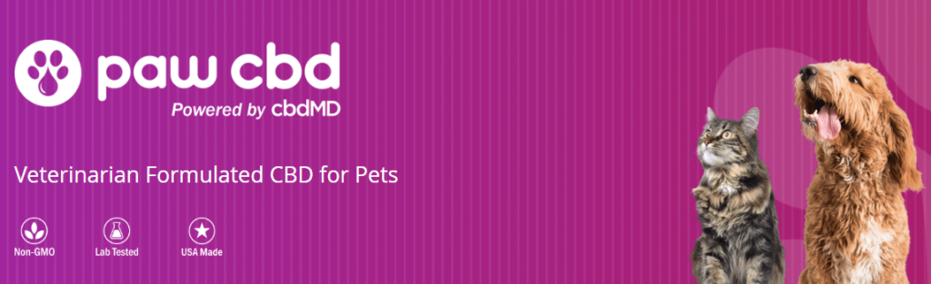 cbdMD Oil for Pets Review
