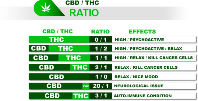 THC to CBD Ratio