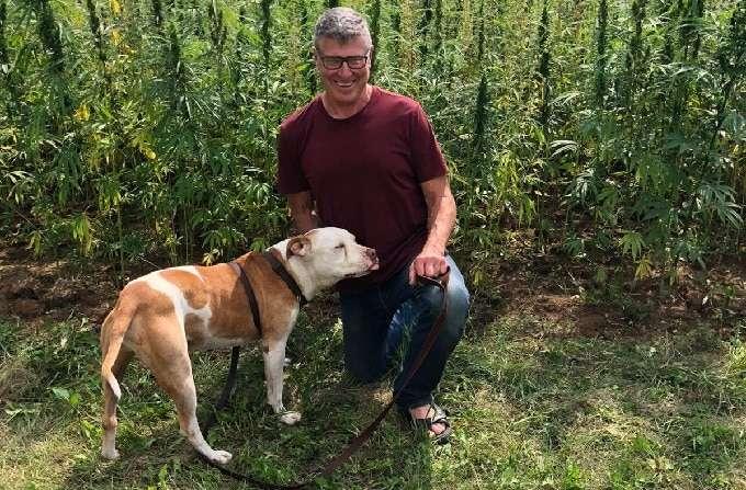 CBD dosage dog vs human