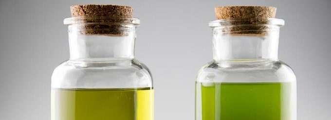 Type of CBD Oils
