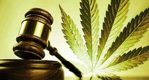 Cannabis Lawyer