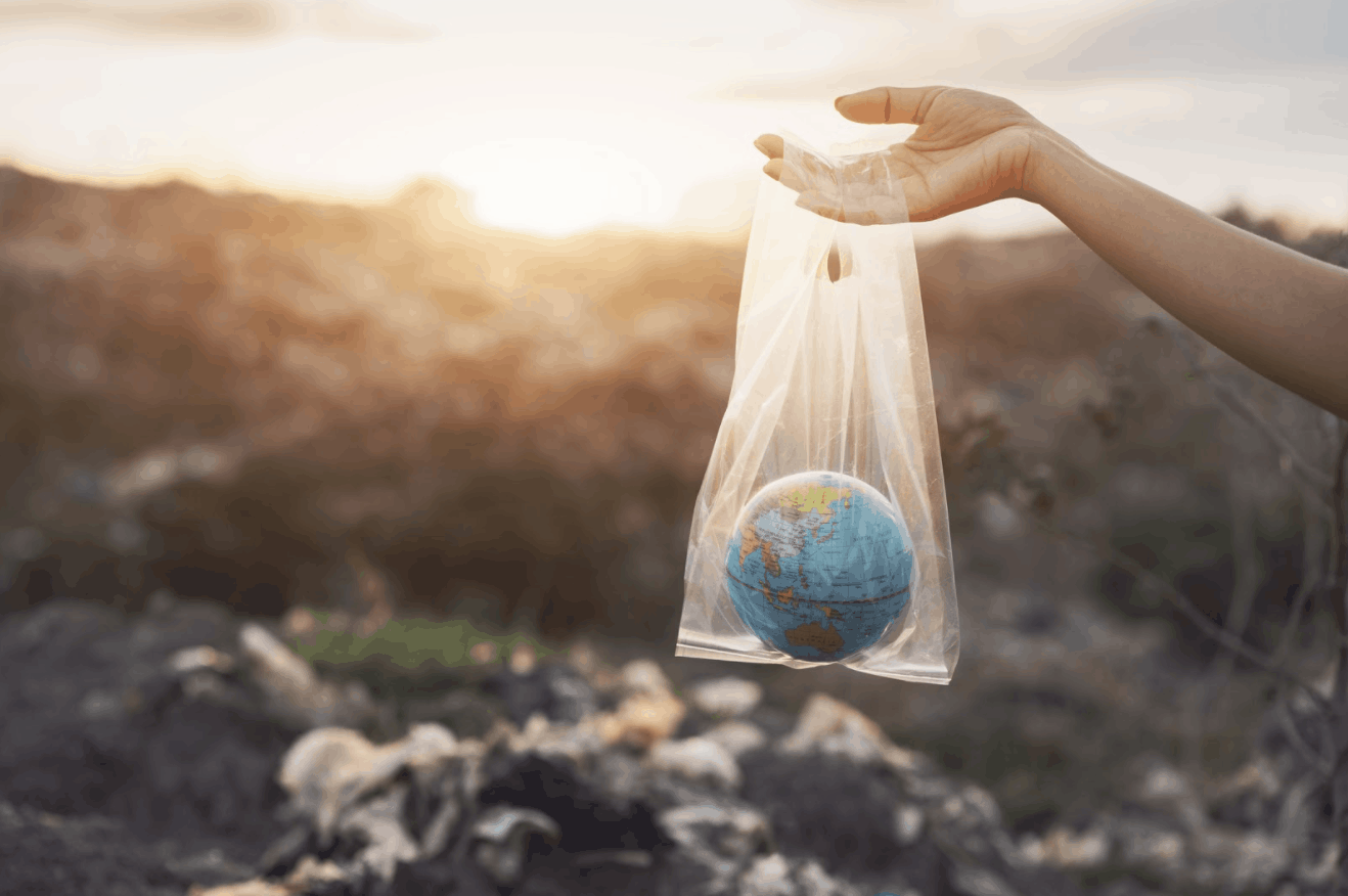 earth in bag