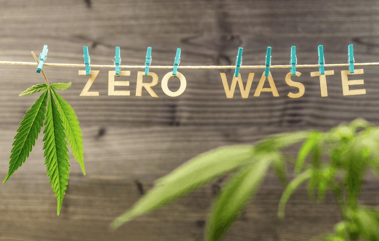 zero waste cannabis