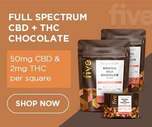 Five CBD chocolates